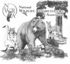 National Wildlife Rehabilitator's Association